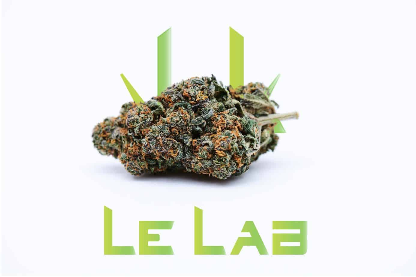 Fleur CBD Alien Le Lab Shop