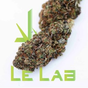Fleur CBD Orange Bud Le Lab Shop