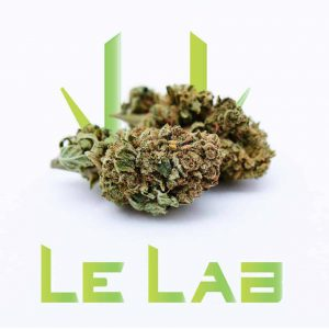 Fleur CBD Pinneapple Kush Le Lab Shop