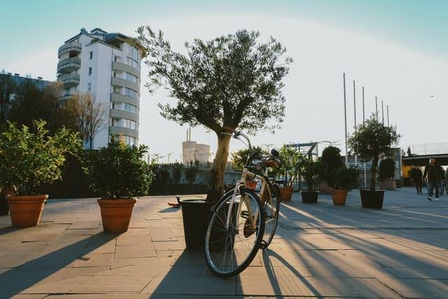 livraison de cbd à vélo écologique